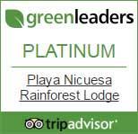 Playa Nicuese GreenLeaders