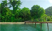 Playa Nicuesa Rainforest Lodge - Muelle