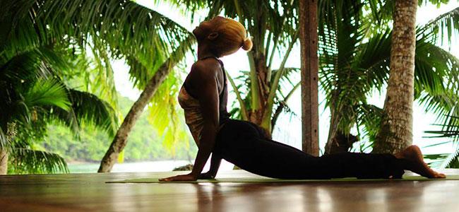 Yoga and Wellness