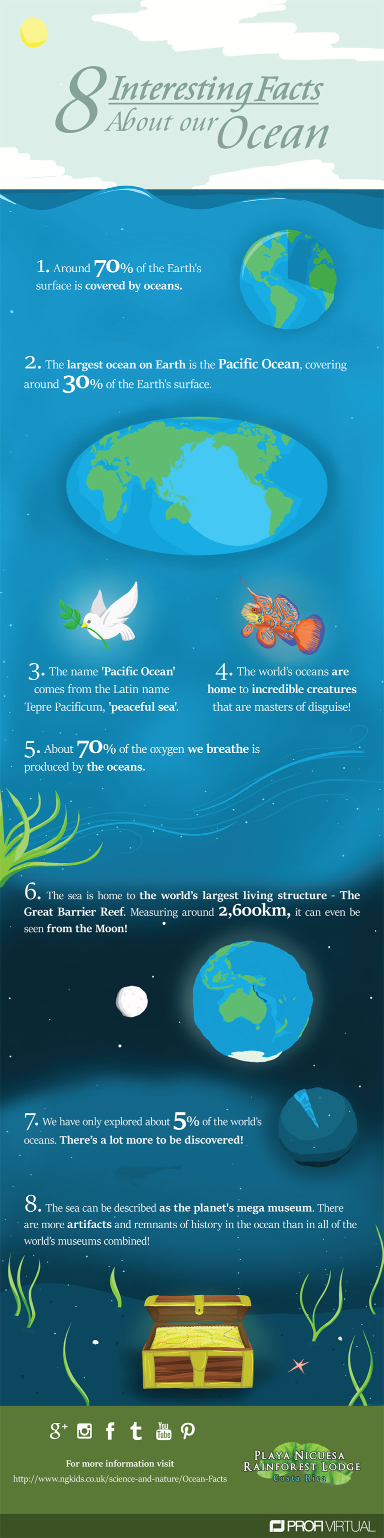 8 Interesting facts about our ocean