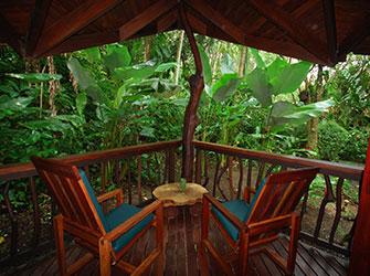 Costa Rican mammals love our gardens
