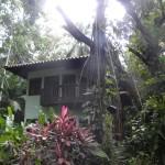 DSCN5727