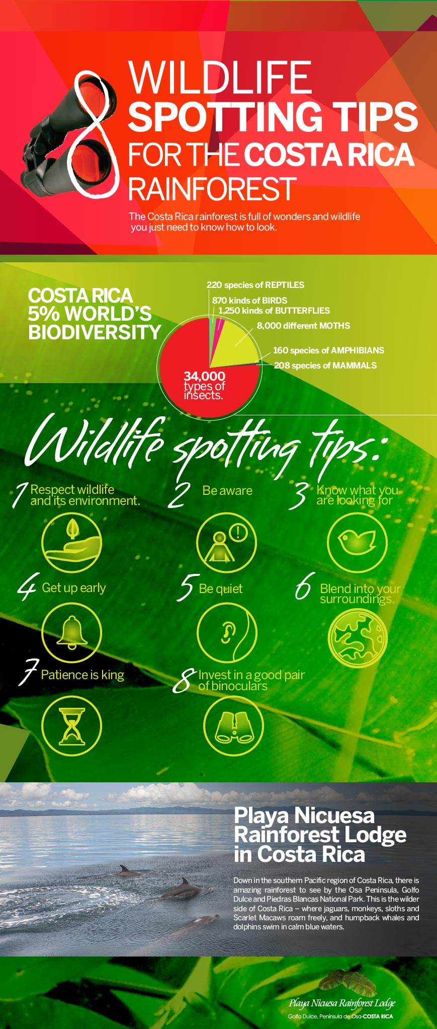 infographic spotting tips