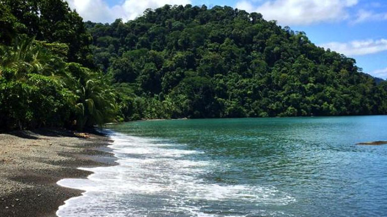 The beach at Playa Nicuesa Rainforest Lodge on the gulf of Golfo Dulce in Costa Rica