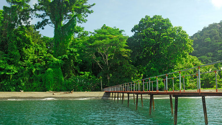 Costa Rica Green Season specials at Playa Nicuesa Rainforest Lodge