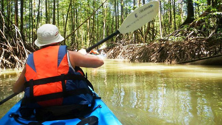 Take the Rio Esquinas mangrove kayaking tour when you stay at Playa Nicuesa Rainforest Lodge