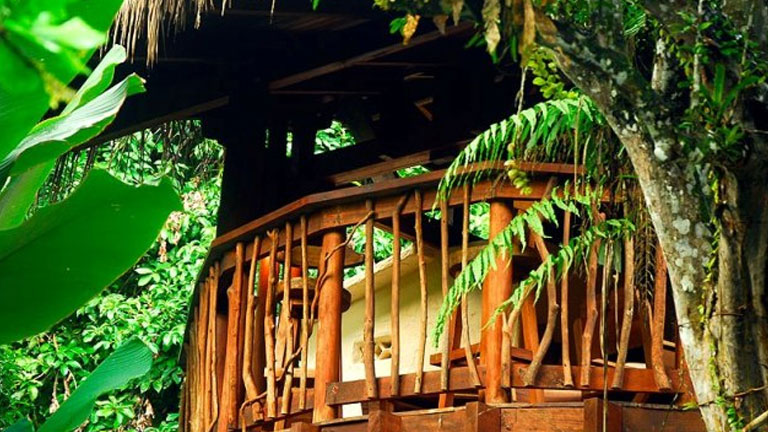Playa Nicuesa Rainforest Lodge in Costa Rica was designed and built in harmony with the environment