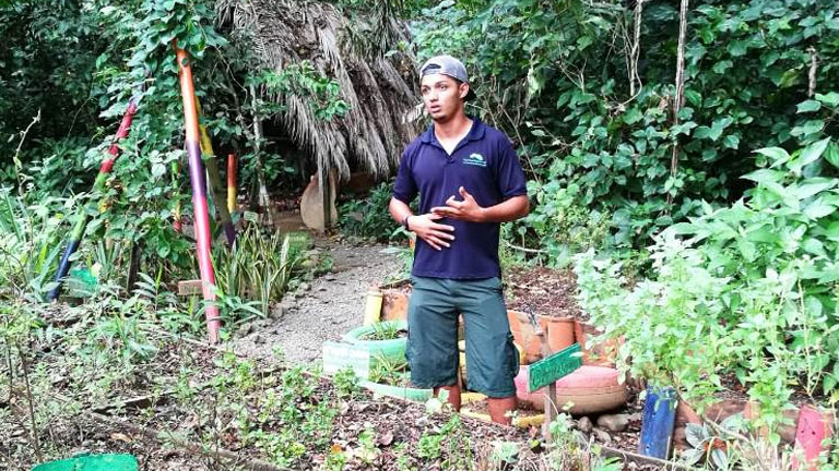 Nicuesa Lodge guide Josue Quesada teaches visitors where their meals come from on the Edible Plant Tour