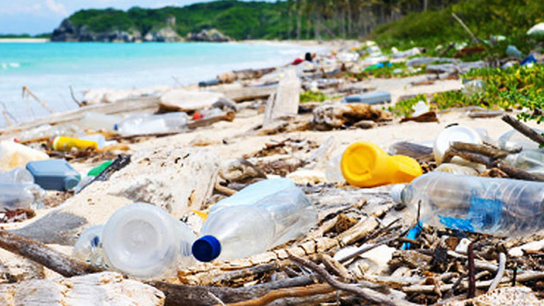 Be a solution to the planet's plastic problem. Say no to using disposable plastic