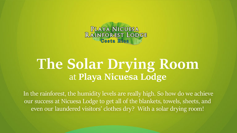 The Solar Dryer Room at Playa Nicuesa