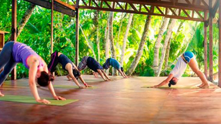 Why Nicuesa Lodge Should Be Your Next Yoga Retreat in Paradise