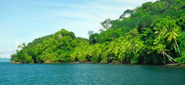 Rainforest Multisport Escapade at Puerto Jimenez Lodge