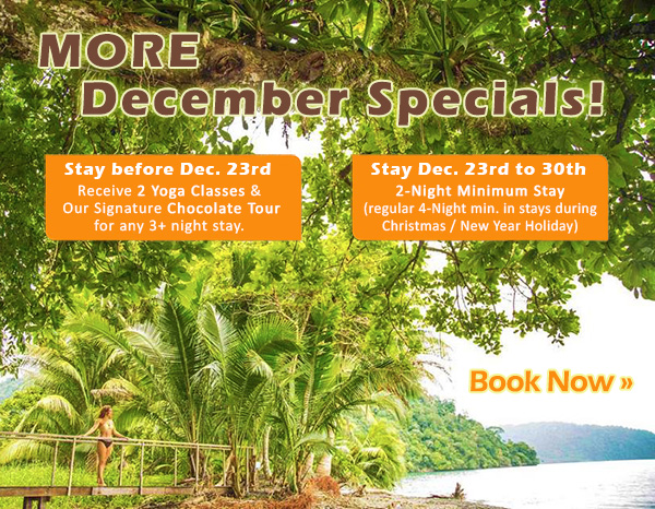 More Specials for December... Check it Out