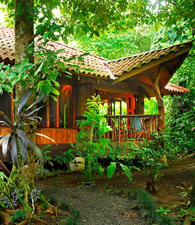 Cabin Suite