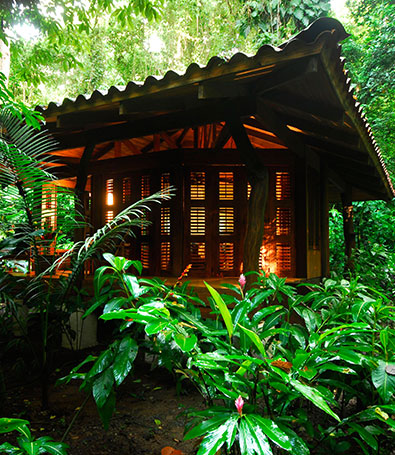 One Bedroom Cabin at Playa Nicuesa Rainforest Lodge, Puerto Jimenez