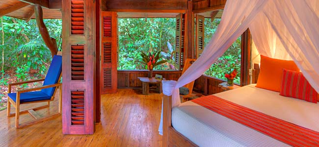 Playa Nicuesa Rainforest Lodge Puerto Jimenez One Bedroom Cabin