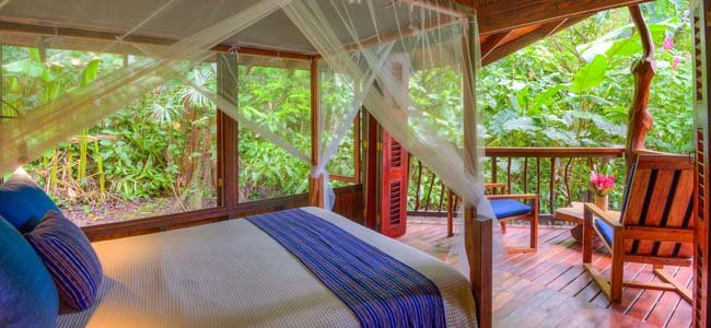Playa Nicuesa Rainforest Lodge Two Bedroom Cabin