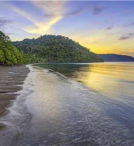 National Parks: Corcovado & Piedras Blancas at Puerto Jimenez