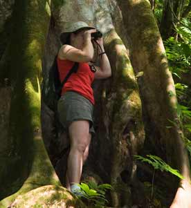 Rainforest Adventures at Osa Peninsula